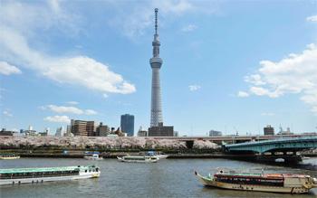 Kulla më e lartë në botë hap dyert për vizitorët Kulla1