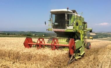 Inspektoriati shtetëror ndërmerr aksione për pengimin e uzurpimit të tokës shtetërore bujqësore