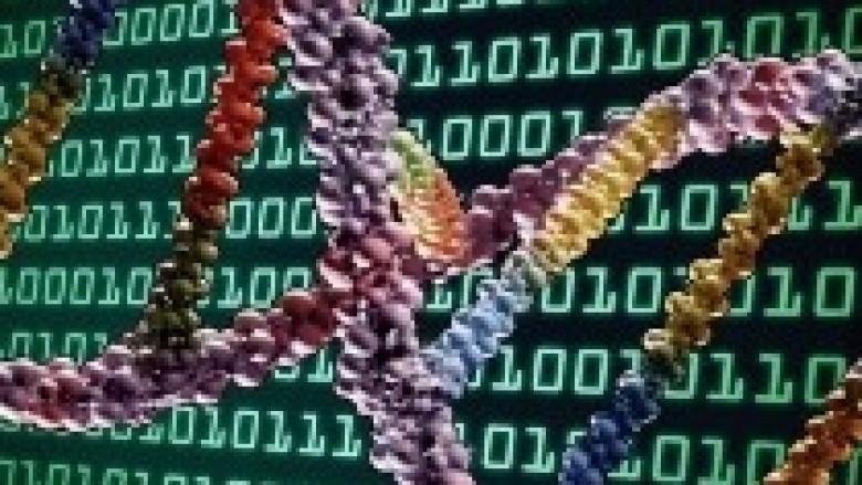 ADN, hapësira e re digjitale