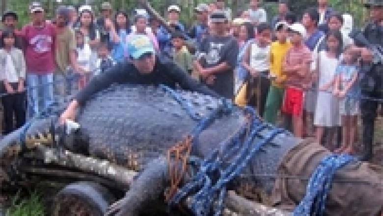 Vajtimi për krokodilin me lot të vërtetë (Foto)