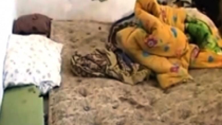 Horrori në Orikum, burri fjeti dy ditë me gruan e vdekur