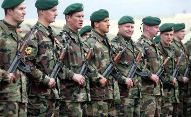 Delegacioni ushtarak i Sllovakisë në vizitë kufirit me Greqinë