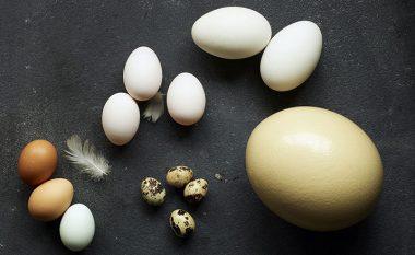 Çfarë domethënie kanë shenjat S, A dhe B në vezë
