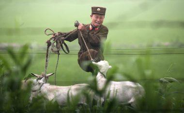 Jeta brenda ushtrisë së Koresë së Veriut (Foto)