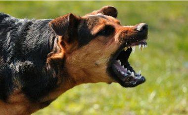 Katër këshilla për të shmangur sulmin nga kafshët