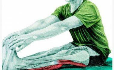 Këto ilustrime shpjegojnë se cilët muskuj i zgjatni kur i bëni ushtrimet e zakonshme (Foto)
