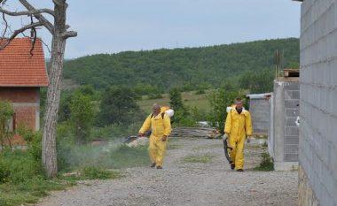 Në Malishevë asnjë rast i infektimit me Ethe Hemorragjike Krime Kongo