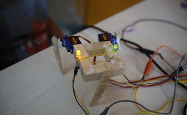 """""""Kampi Robo"""", për fëmijët e moshës 12-15-vjeçare: Aty ku natyra ndeshet me teknologjinë"""