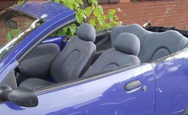 Ndalohet shoferi që e preu veturën për ta pasur më freskët (Foto)
