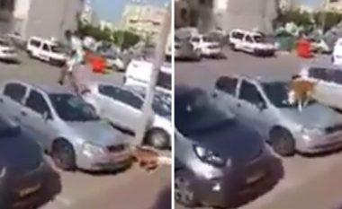 Burri i tmerruar hip mbi vetura, për të shpëtuar kokën nga qeni (Video)