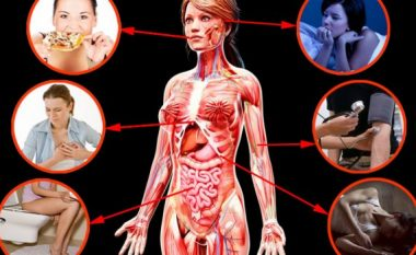 Shikoni çka i ndodh trupit tonë pas ndarjes! (Video)