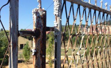 Mitrovica mbushet me kërmij (Foto)