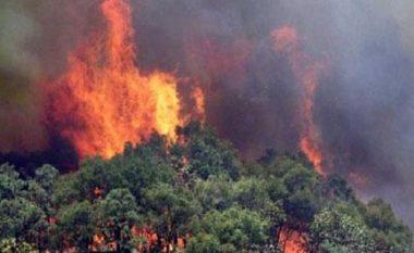 Lufta me flakët në Shëngjin, era krijon vatra të reja