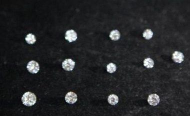 Vodhi 133 diamante, e pabesueshme se ku i kishte fshehur (Foto)